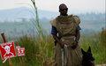 2 millions de dollars du Gouvernement japonais pour la Lutte Anti-mine en RDC