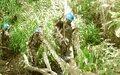 Goma: Un Casque bleu de la MONUC succombe aux blessures subies lors d'une attaque