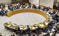Security Council- From MONUC to MONUSCO